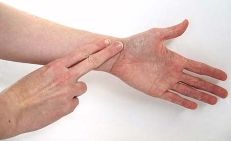 Two fingers are placed on the inside of a wrist