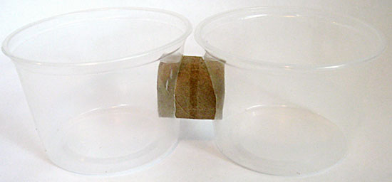Circular holes are cut into the sides of two plastic cups and a cardboard tube is inserted between them