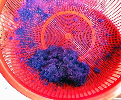 Red cabbage pulp in a strainer