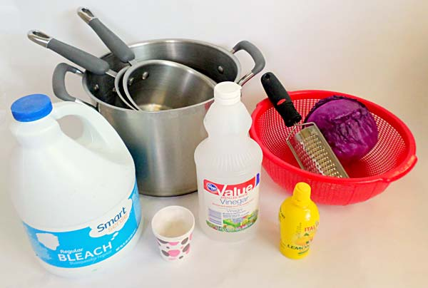 Photograph of the materials needed to create a pH indicator solution from cabbage.