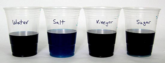 Cups with dye labeled water, salt, vinegar, or sugar.