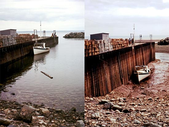 Side by side photo of high tide and low tide in the Bay of Fundy