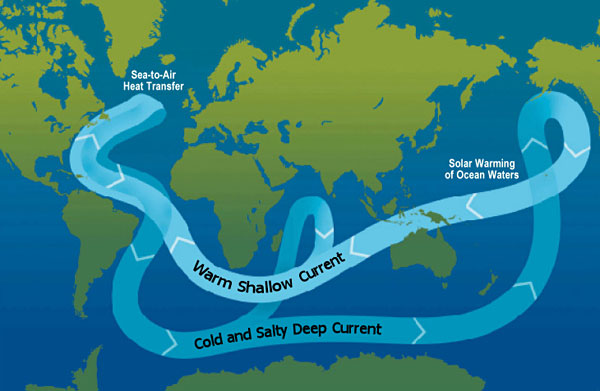 World map shows the movement of warm water from the Pacific to the Atlantic and cool water from the Atlantic to the Pacific