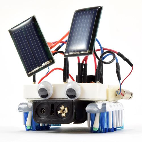 solar-powered bristlebot