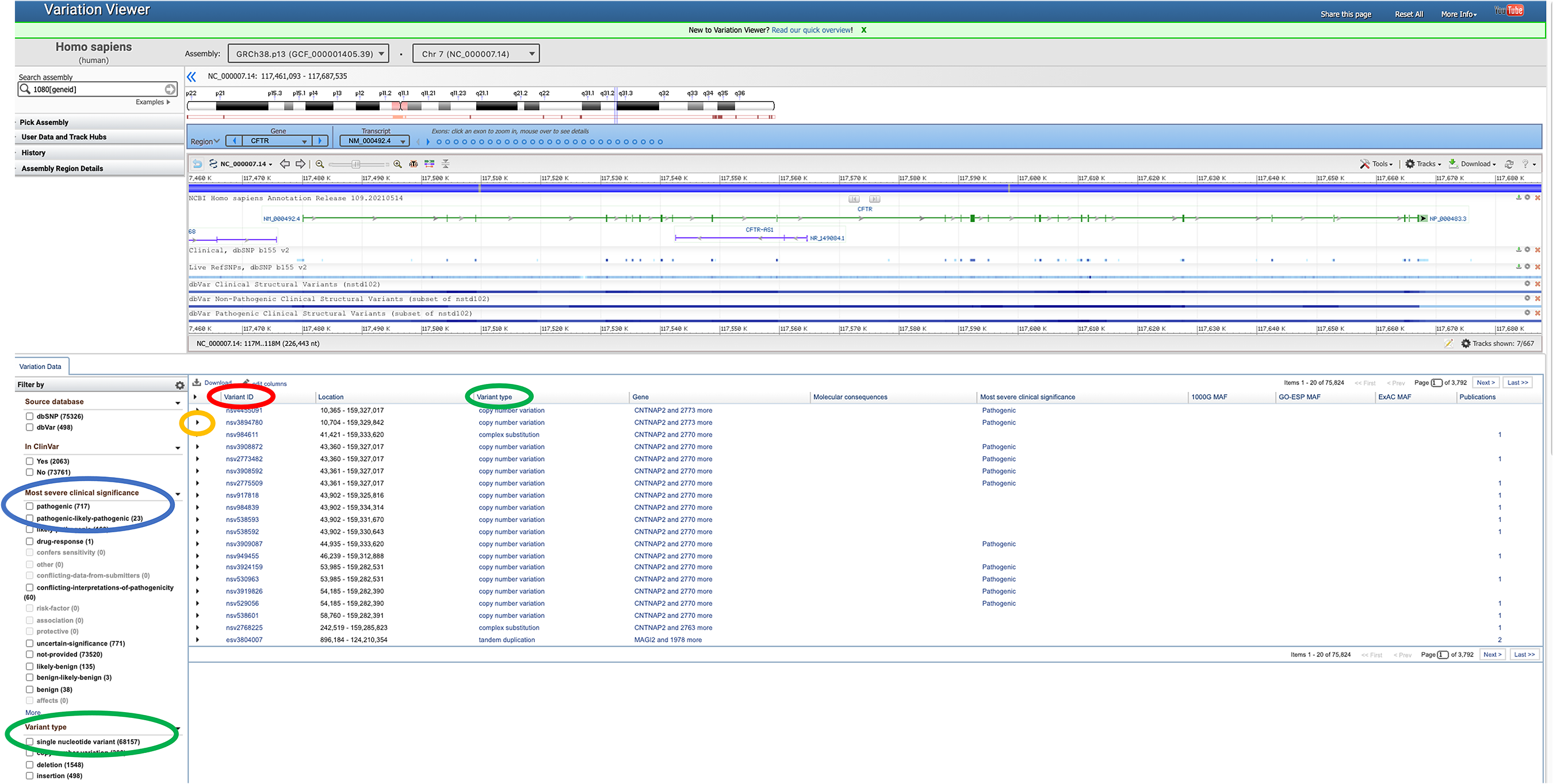 Screenshot of the SNPs for the CFTR gene in the NCBI SNP database.