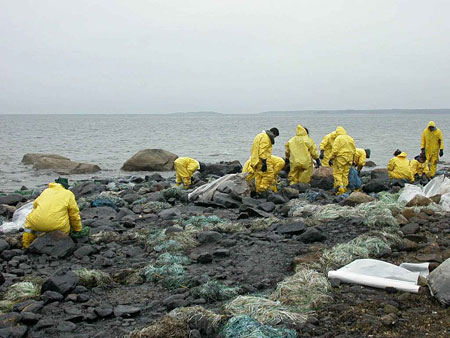 Workers in yellow suits cleaning up a beach from an oil spill.