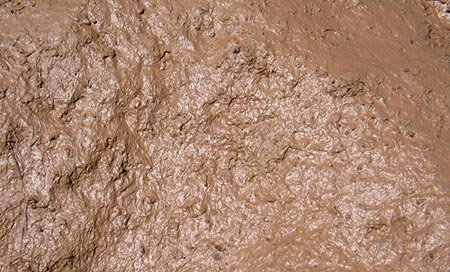 Top-down photo of mud