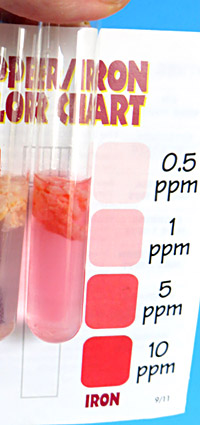 In a colorimetric test for iron, you compare the color of a solution with a graded scale on a color chart