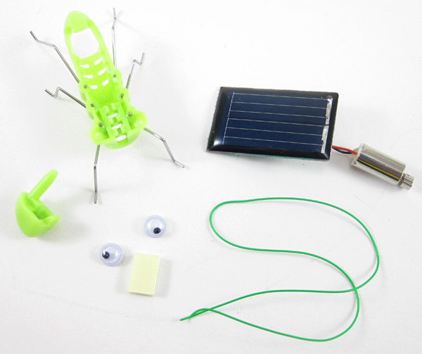 A plastic grasshopper body and head, solar panel, motor, green wire, plastic eyes and double sided tape
