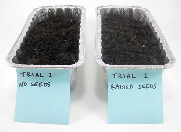Soil erosion trials labeled