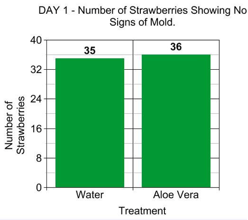 A bar graph showing the data recorded the first observation day.