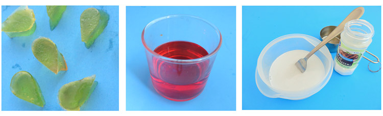 Small pieces of jello, red colored water and proteases solution are used in the pill experiment