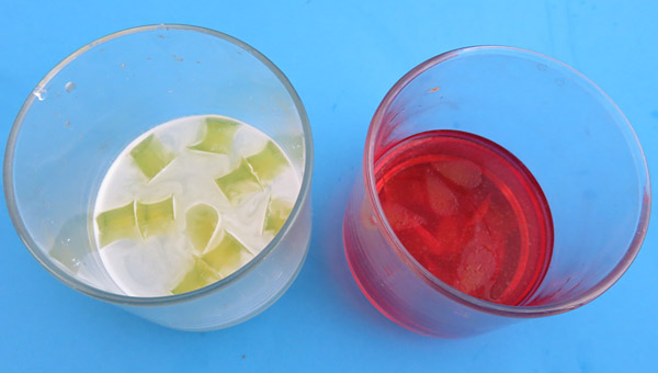 Small jello pieces are submerged in proteases solution and red colored water side-by-side