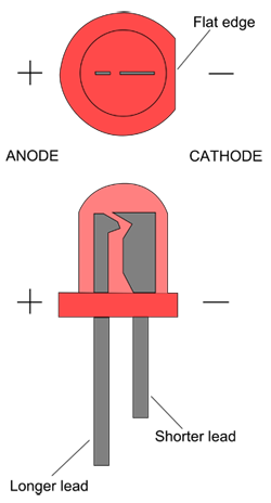 Drawing of a red LED shows a shorter lead and flat edge on the negative side of the LED bulb