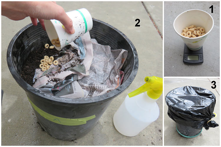 Three photos show cereal being weighed and added under the newspaper in a composting pot before the pot is sealed again