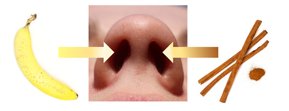 Photo of a bottom-up view of a nose next to a banana pictured on the left and cinnamon sticks pictured on the right