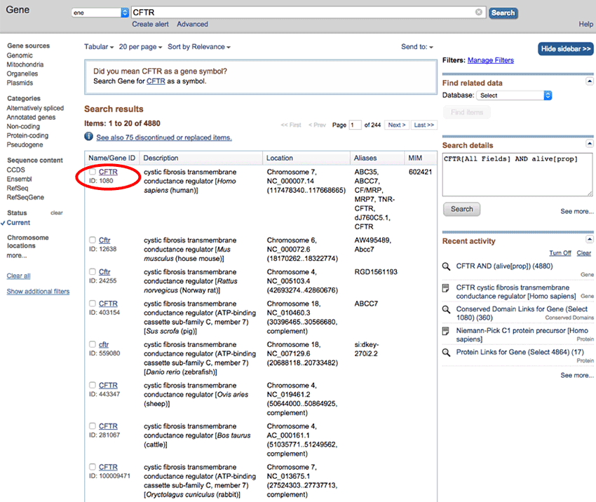 National Center for Biotechnology Information (NCBI) Gene database screenshot