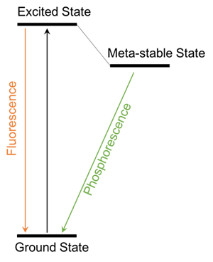 Energy scheme that shows fluorescence and phosphorescence.