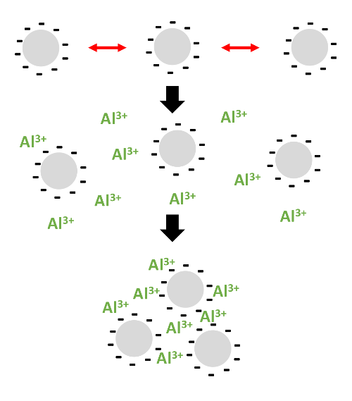 Mechanism of flocculation with flocculants.