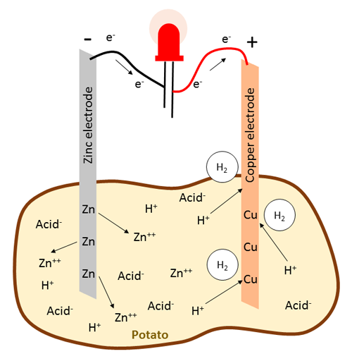 Diagram of the chemical reaction that occurs in a potato battery, with an LED connected between the electrodes.