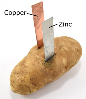 copper and zinc electrodes in a potato battery