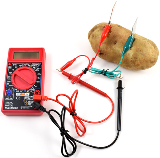 Two alligator clips connect the leads of a multimeter to a zinc and copper electrode in a potato