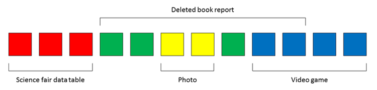 deleted files a deleted book report