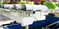Agricultural Technology -  Aquaponics