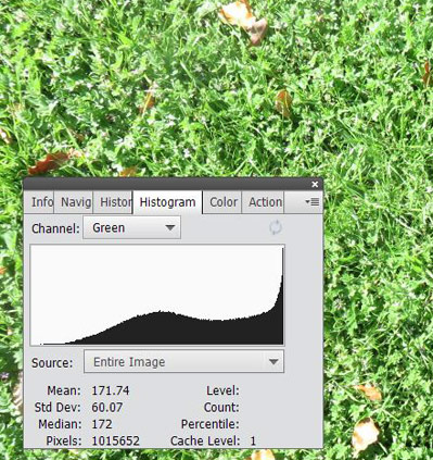 An image histogram for the channel green is overlaid on a photo of grass