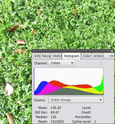 An image histogram for three color channels is overlaid on a photo of grass