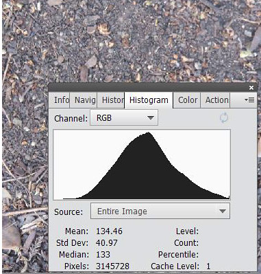 Distribution of average light intensity for a picture of dirt