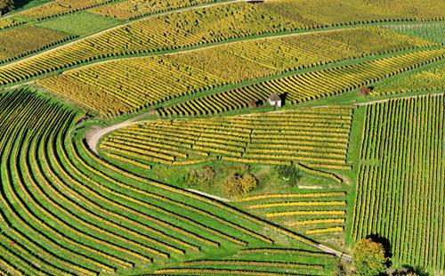 aerial farmland thumbnail