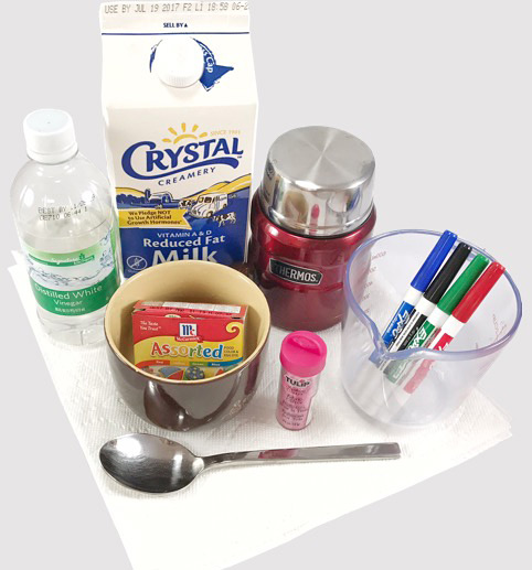 Materials needed for the milk plastic lesson plan