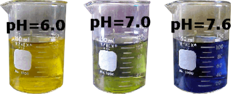 pH indicator bromothymol blue changes color from yellow to blue