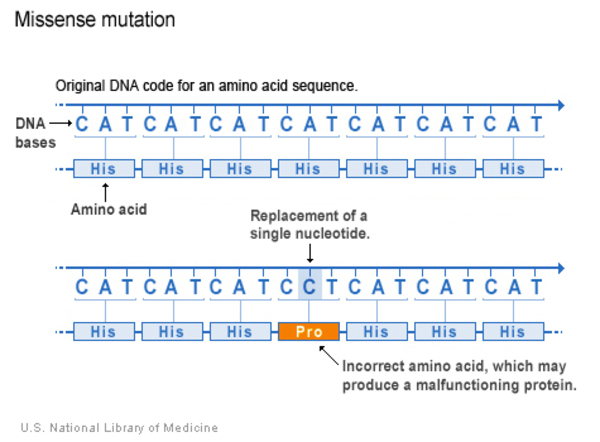 protein with clinically relevant mutations mapped