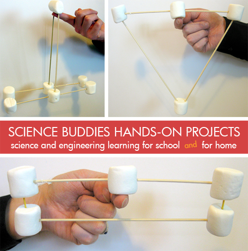 science buddies projects Award winning science fair projects ideas - free project examples by grade level.