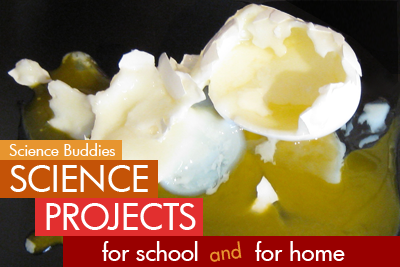 Soft boil Eggs / science Activity Family Science Spotlight