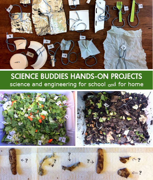 Weekly Science Activity Spotlight / decomposing objects Science Project for School or Family Science