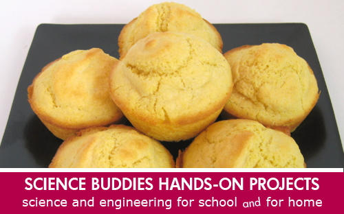 Food science kitchen chemistry cornbread baking Science Project / Weekly Family Science Project Highlight