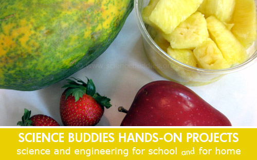 Weekly Science Activity Spotlight / Fruit and Gelatin Hands-on Science Project for School or Family Science
