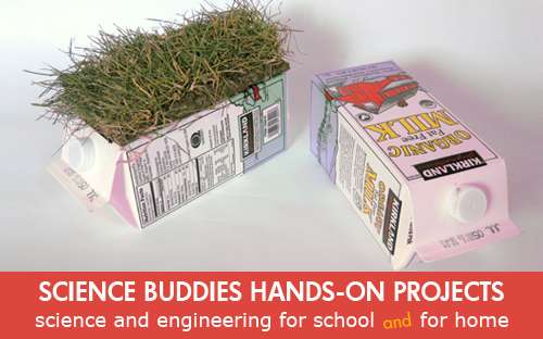 Rooftop Gardens: Weekly Science Project Idea And Home Science Activity  Spotlight