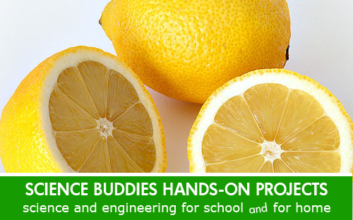 Tastebuds Human Health Science Project / Weekly Family Science Project Highlight