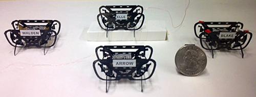 HAMR Micro Robots