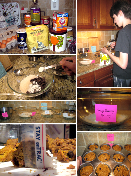 Baking Up a Science Project | Science Buddies Blog