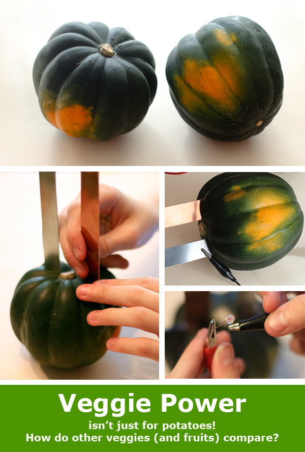 Veggie Power with squash / Electronics activity and science experiment kit