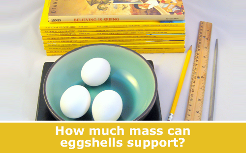Materials Sciences project to test the strength of eggshells and arches / Hands-on science STEM experiment