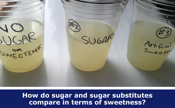 How do sugar substitutes compare to sugar in terms of sweetness? Weekly family science activity spotlight
