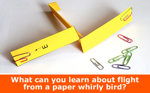 Explore Aerodynamics of Flights with a Paper Whirly Bird Helicoopter / Physics family STEM activity