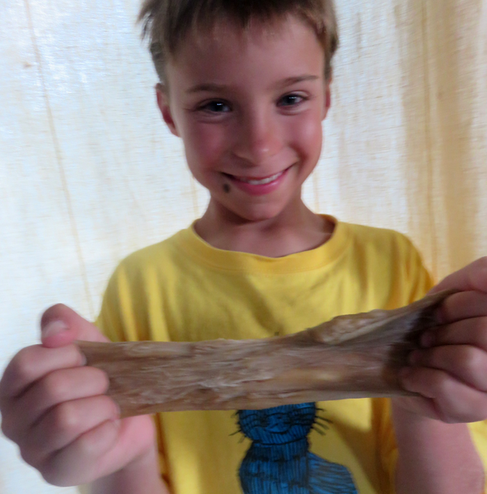 Stretchy Dough and the Science of Gluten / Weekly family STEM activity