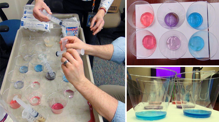 PPG Volunteers Help Science Buddies Improve Student Chromatography Project